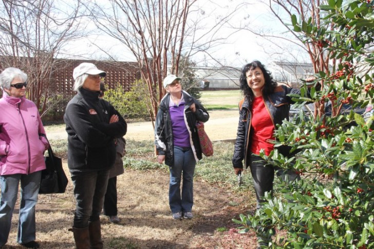 photo credit: Pruning workshop via photopin (license)