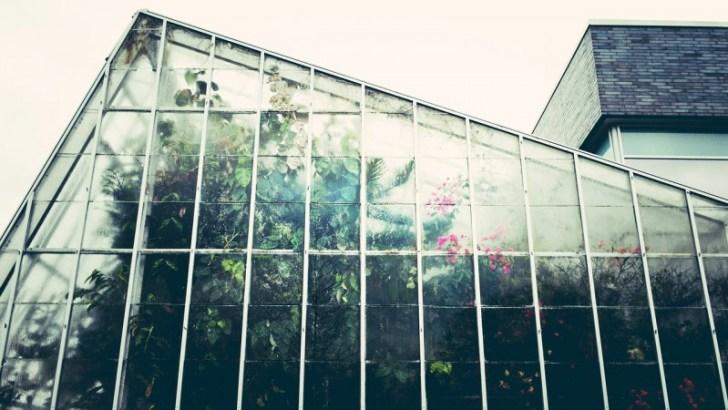 greenhouse-1246536_1280