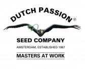 Dutch_Passion-seeds