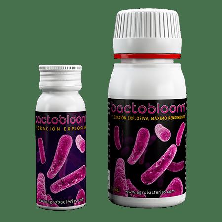 bacterias_bactobloom