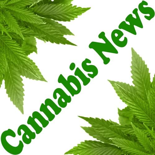 Noticias Breves – Mundo Cannabis Marihuana