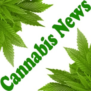 cannabis-news