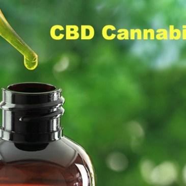 CBD Cannabidiol extracto aceite medicinal características y usos