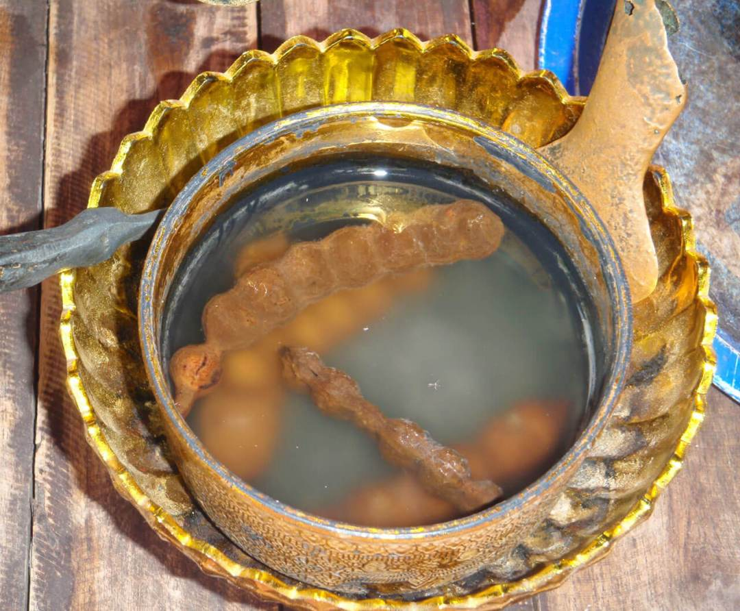 Tamarind (Tamarindus indica) fruit soaking in water to make a wash for Buddhist status in Chiang Mai, Thailand.