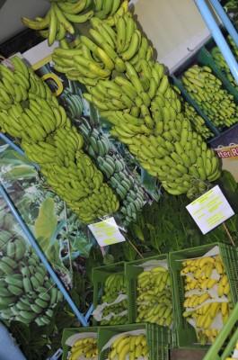 83kg banana bunch