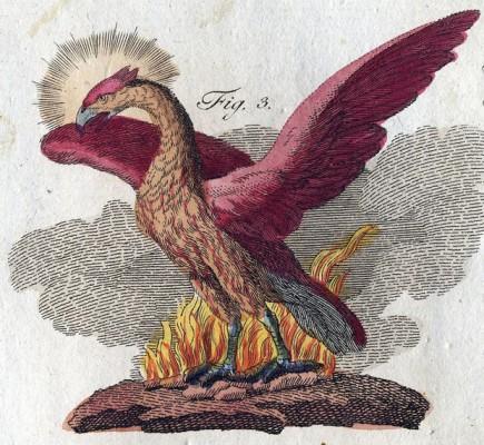 Friedrich Justin Bertuch, Bilderbuch für Kinder, 1790–1830.
