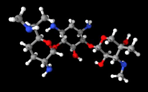 Gentamicin antibiotic: a 30S prokaryotic ribosome  inhibitor (wiki)