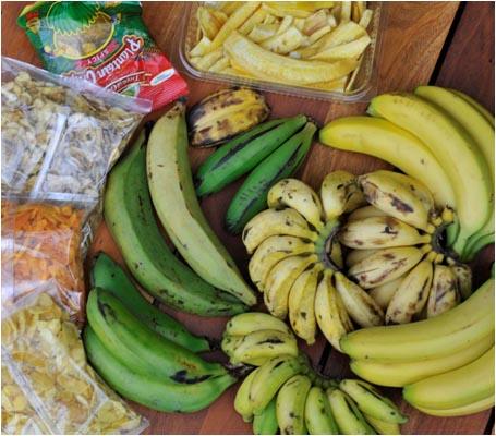 Six banana varieties and banana products bought in Leicester, UKSix banana varieties and banana products bought in Leicester, UK