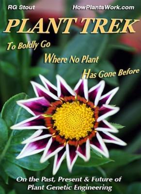 Image: Richard Stout, Plant Trek.