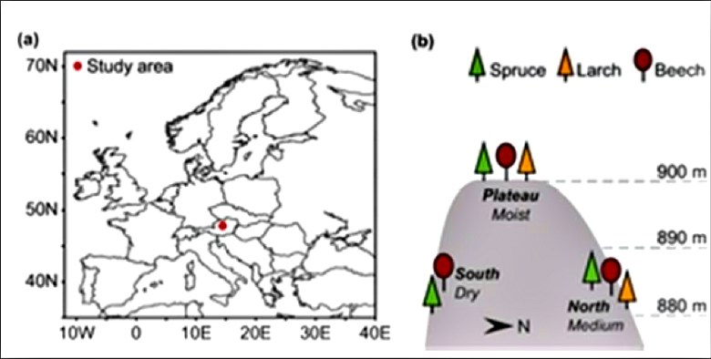Figure 1 from Hartl-Meier et al. 2014 describing the study sites