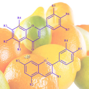Genetic and tissue diversity of phenolic compounds in <i>Citrus</i>