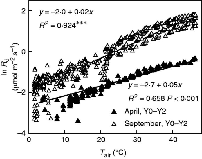 Temperature response of foliar daytime respiration rates (R<sub>d</sub>) in Y0–Y2 needle cohorts during April and September 2013.