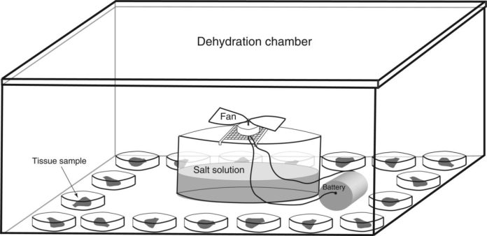 Schematic of the dehydration assay set-up.