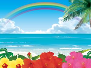 海,虹,ハワイ,ハイビスカス,ビーチ