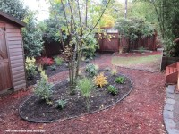 Pet Friendly Gardening and Landscape in Seattle | Bothell ...