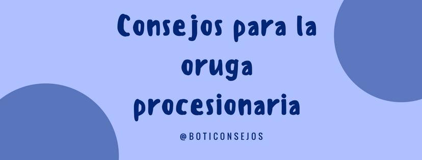 Consejos para la urticaria producida por procesionaria.