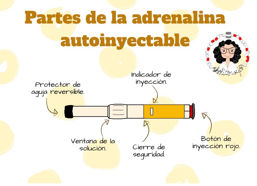 partes de la adrenalina inyectable