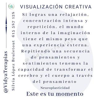 Visualización y neuroplasticidad