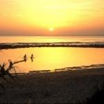 cadiz-turismo-zahora-playa-chi kung-shiatsu-masajes