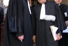 avocati