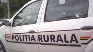 Politie rurala