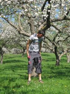 ciprian tarmac copac