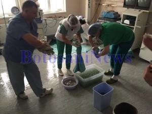 cadre medicale sala de operatii inundata