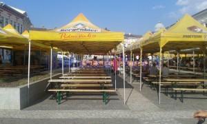 festivalul-verii-3