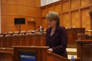mihaela hunca- camera deputatilor