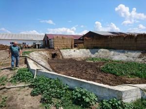 agromer srl, stiri, botosani, bazin dejectii
