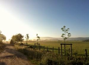 Compostelle - Camino Frances - 2013