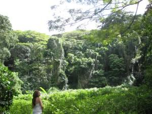 Bottes et Vélo - Hawaï