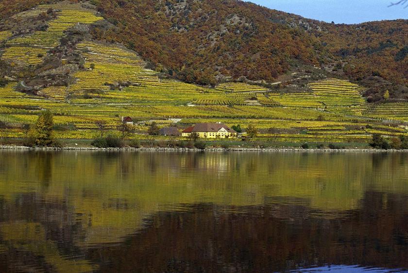 Blick auf den Loibenberg in der Wachau