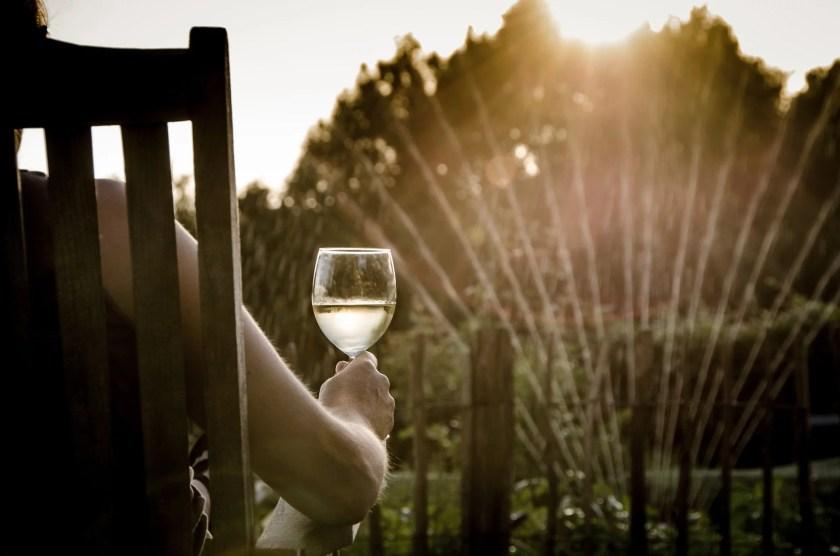 Mann sitzt in der sommerlichen Abendsonne mit einem Glas Weißwein in der Hand auf einem Stuhl und schaut dem Reasensprenger zu.