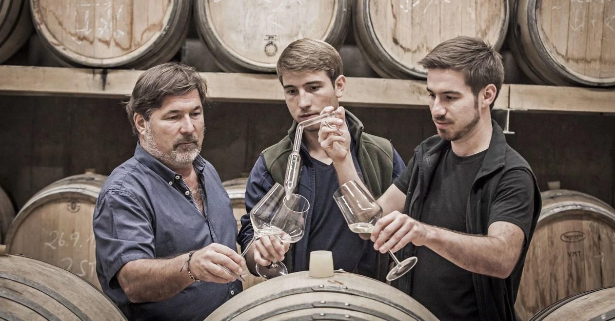 Sattlerhof: Charakterstarke Weine aus der Südsteiermark