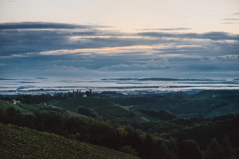 Blick in die Südsteiermark vom Weingut Lackner-Tinnacher aus