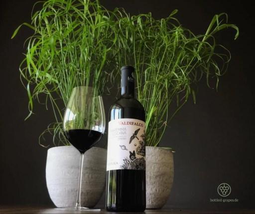 Syrah vom Weingut Valdifalco, daneben ein eingeschenktes Rotweinglas, im Hintergrund eine Grünpflanze