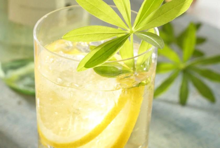 Bowle mit Zitrone und Waldmeister in einem Glas in der Nahaufnahme