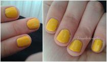 Day 3: Yellow