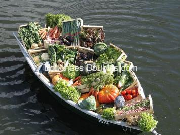 Légumes-les tueurs d'acides pour notre métabolisme