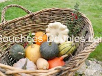 Panier de cucurbitacées (courges, citrouilles, potirons)