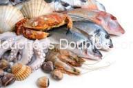 Cliquez ici pour tout savoir sur les poissons-poisons, comment les éviter et mieux consommer du poisson pour votre santé et celle de notre environnement