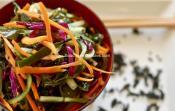 Cliquez ici pour découvrir toutes les vertus nutritives des algues pour notre santé et plus encore ! Où se fournir, comment les consommer, les conserver...