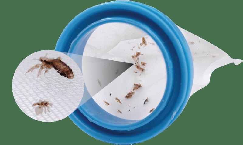 V.COMB-filtres-anti-poux-bougievip