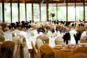 Green Wedding Reception