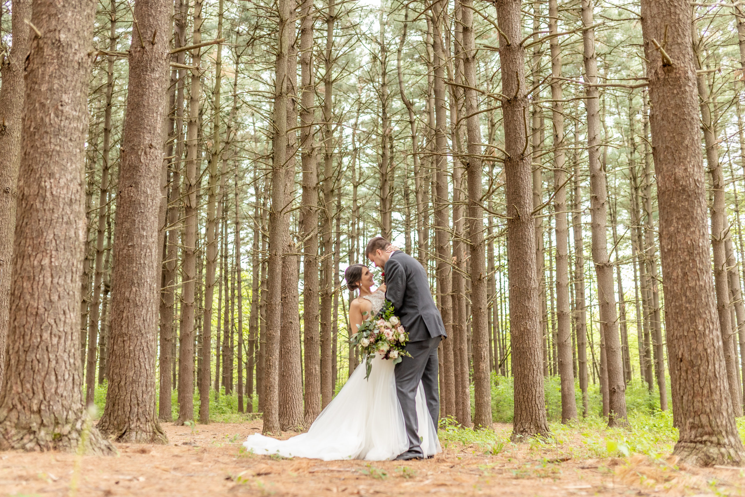 southern illinois photographer, pine trees, groom dipping bride,
