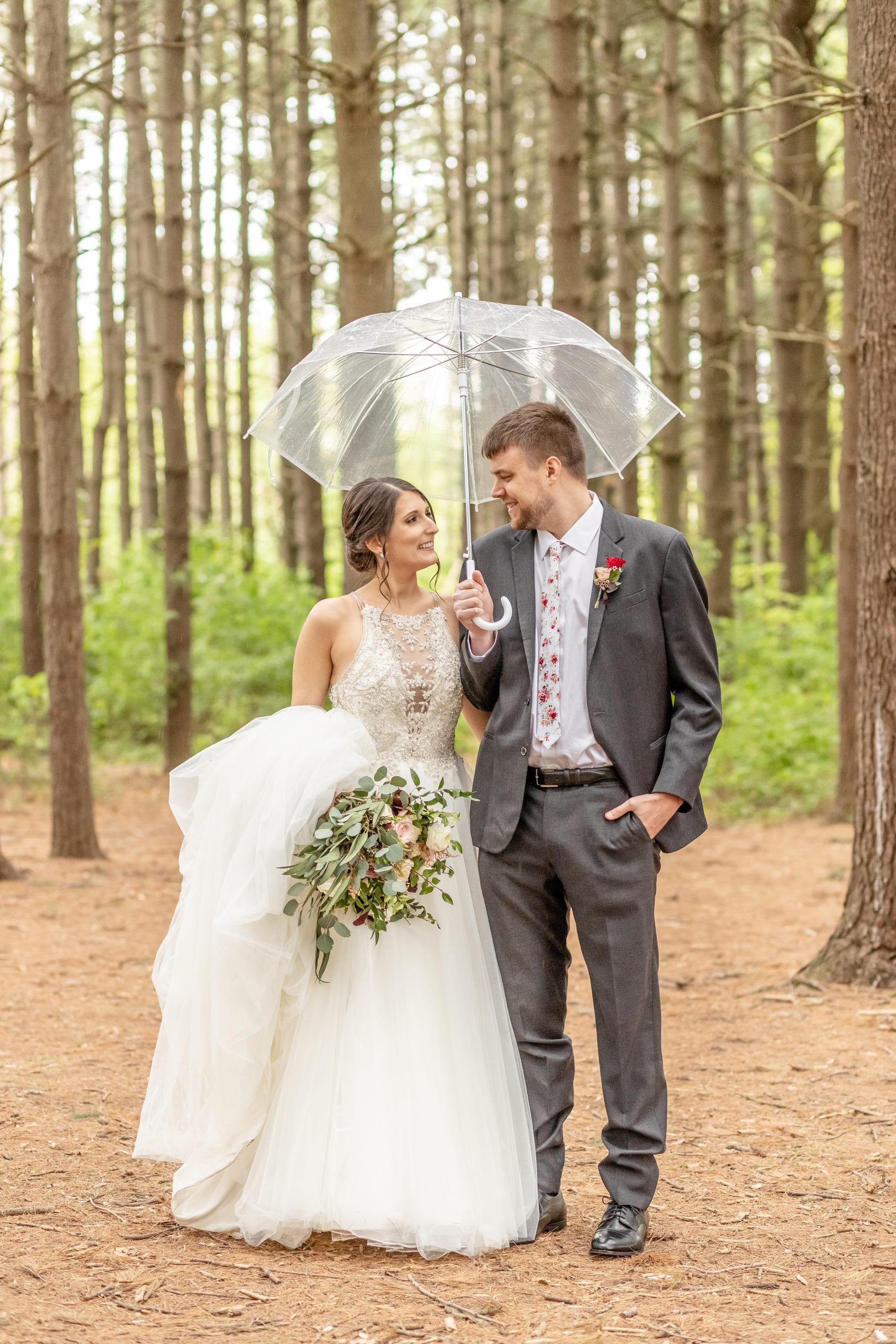 umbrella, see-through umbrella, wedding dress with long train,southern illinois photography