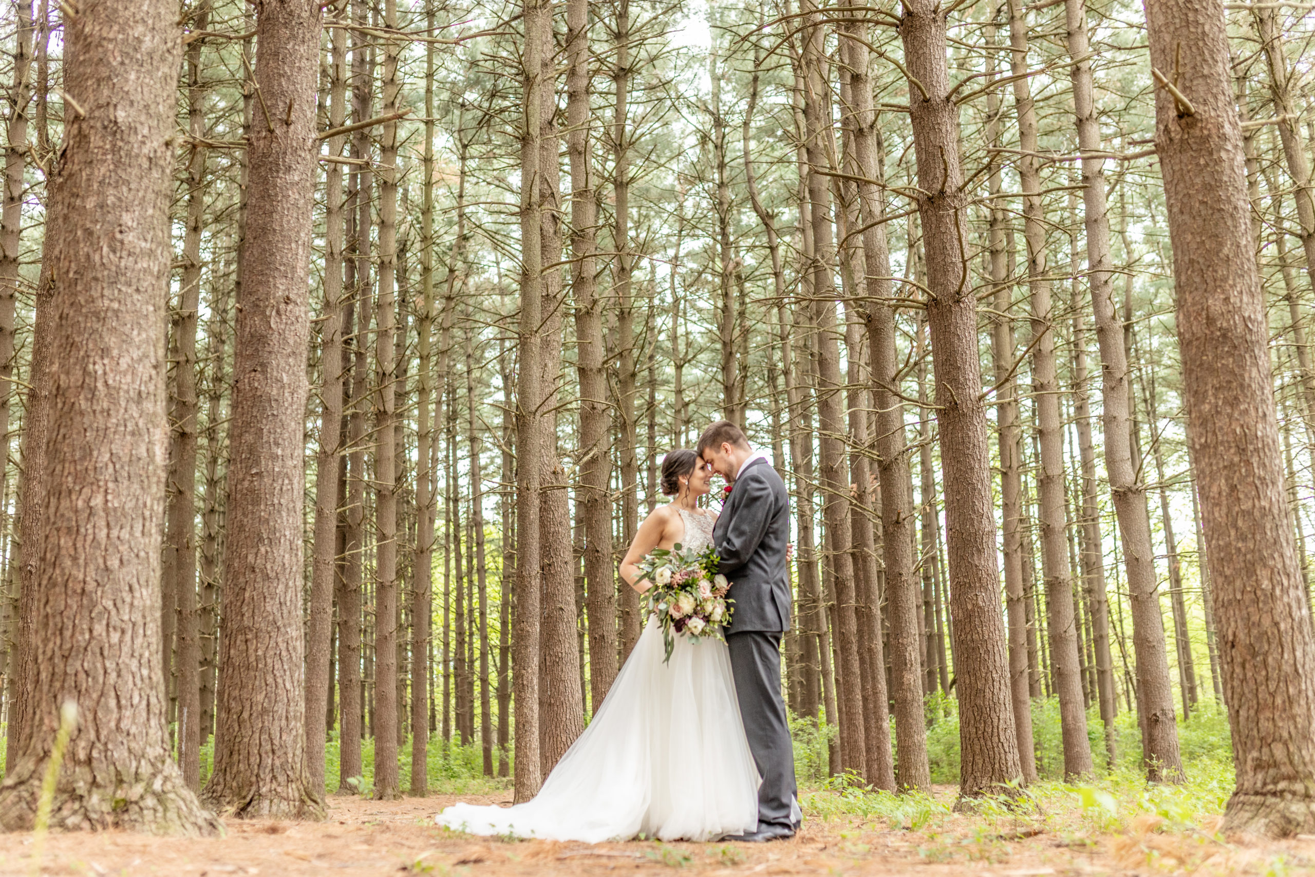 bride and groom, pine tree forestsouthern illinois photography  ,