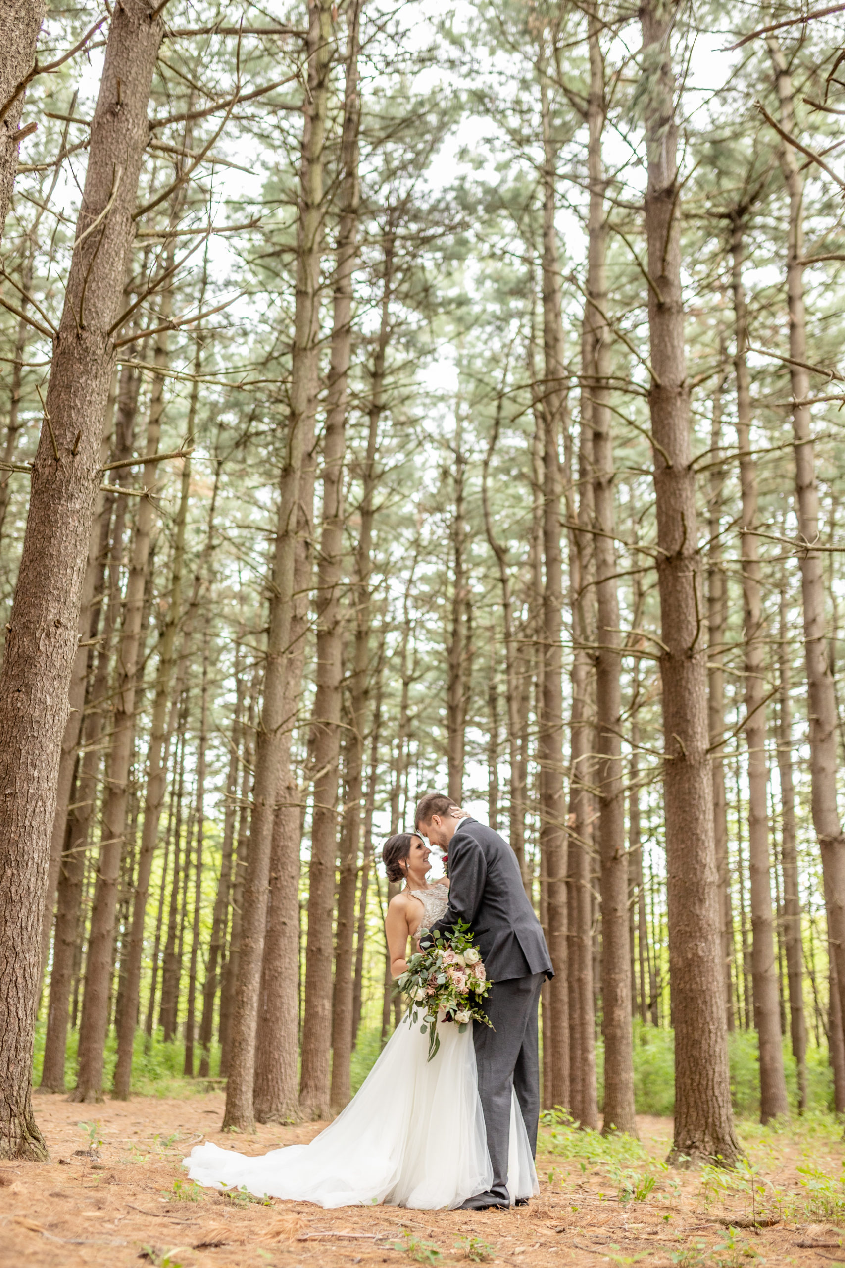 bride and groom, pine tree forestsouthern illinois photography