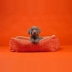 Wegman Dog Eared Bumper Bed_bkgrnd
